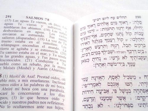 Libro de Salmos Hebreo - Español